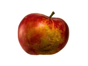 An aesthetically flawed apple on white background.